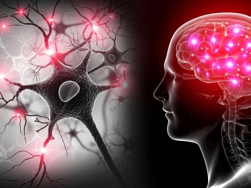 medatie en mediteren en hersengolven